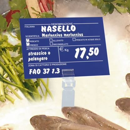 Picture of A6 FORMAT TAG FOR FISH SECTION